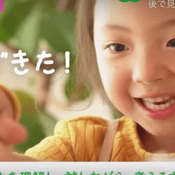 こどもちゃれんじ すてっぷコース(4・5歳)紹介動画