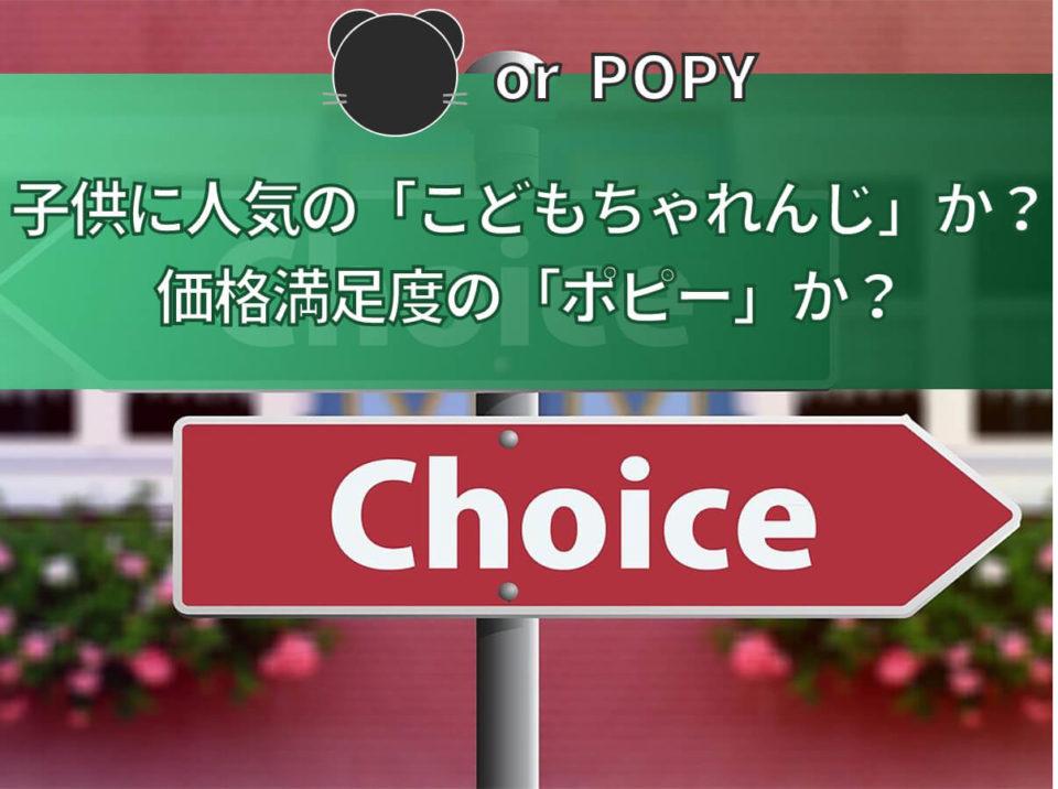 【頂上決戦】こどもちゃれんじ v.s ポピー|7大ジャンルでガチ比較の紹介